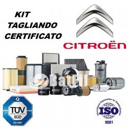 Kit tagliando Citroen C2/C3 1.1i/1.4i  da 01/2004