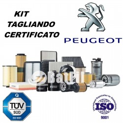Kit tagliando Peugeot 307 1.4 HDI  da 2001  1007 1.4 HDI...